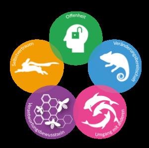Die 5 sozialen Kompetenzen des AKI-Projekts